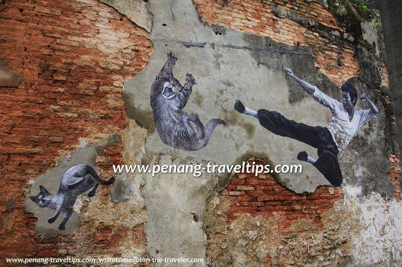 Bruce Lee Cat Mural