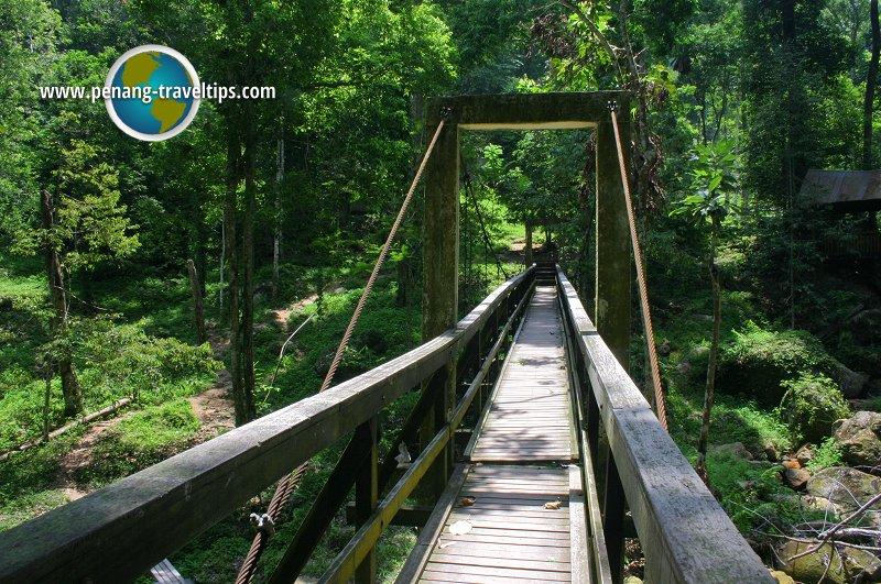 Bukit Mertajam Recreational Forest suspension bridge