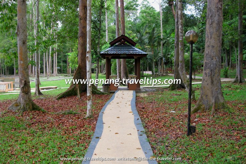 Forest rest stop, Bukit Panchor State Park