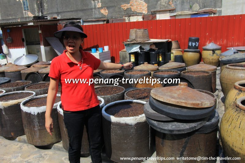 The proprietor's daughter explaining the different stages of the soya-sauce-making process